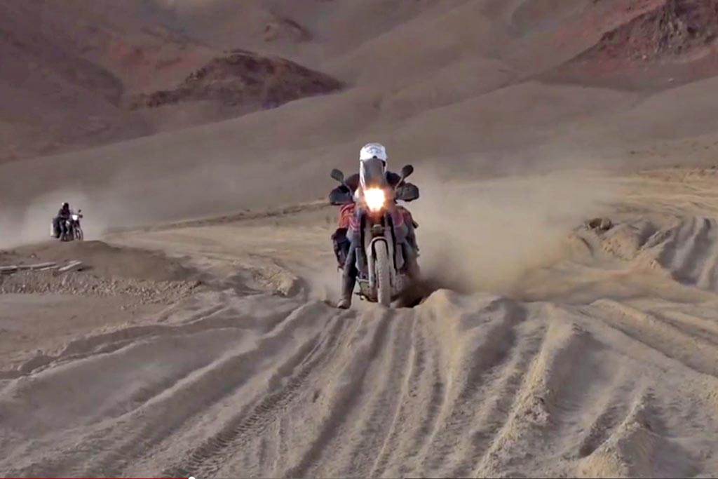 Bull-Dust-in-the-Himalayas